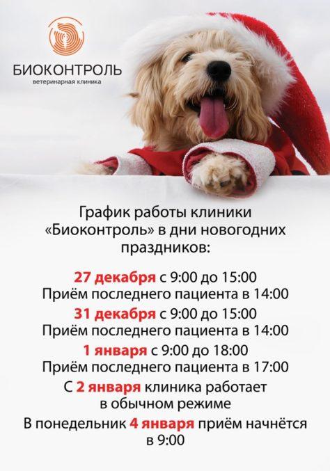 График работы клиники в новогодние праздничные дни