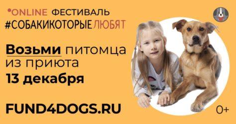 """Предновогодний благотворительный онлайн-фестиваль """"Собаки, которые любят"""""""